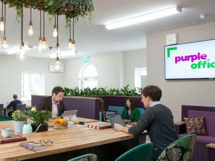 Purple Office Dorchester